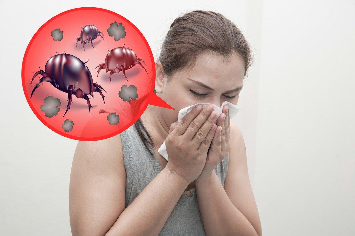 Дихателна алергия причинена от акари - Саниста ВИП