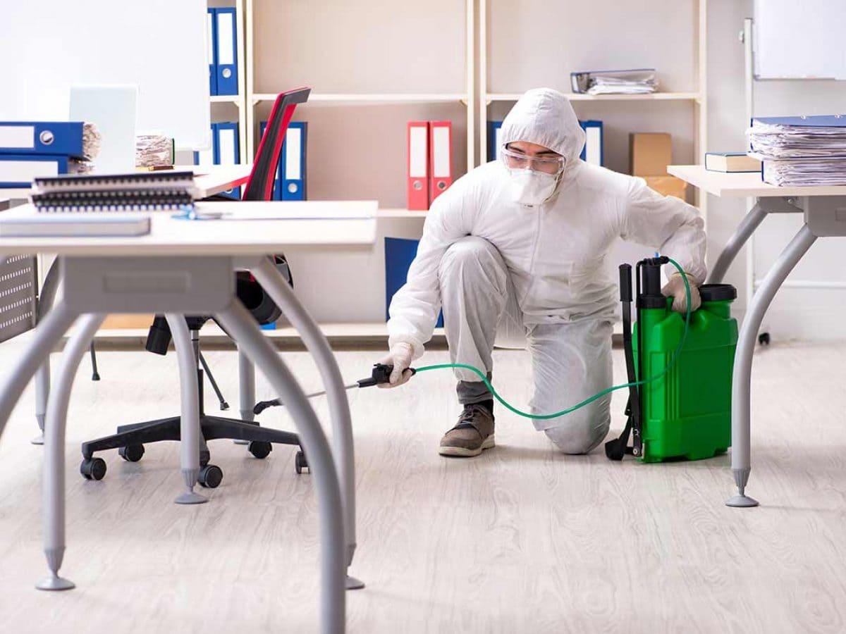 За качественна дезинфекция на помещения са необходими обучени и оборудвани екипи. Саиста ВИП вече над 20 године извършва услуги по дезинфекция, дезинсекция и дератизация.